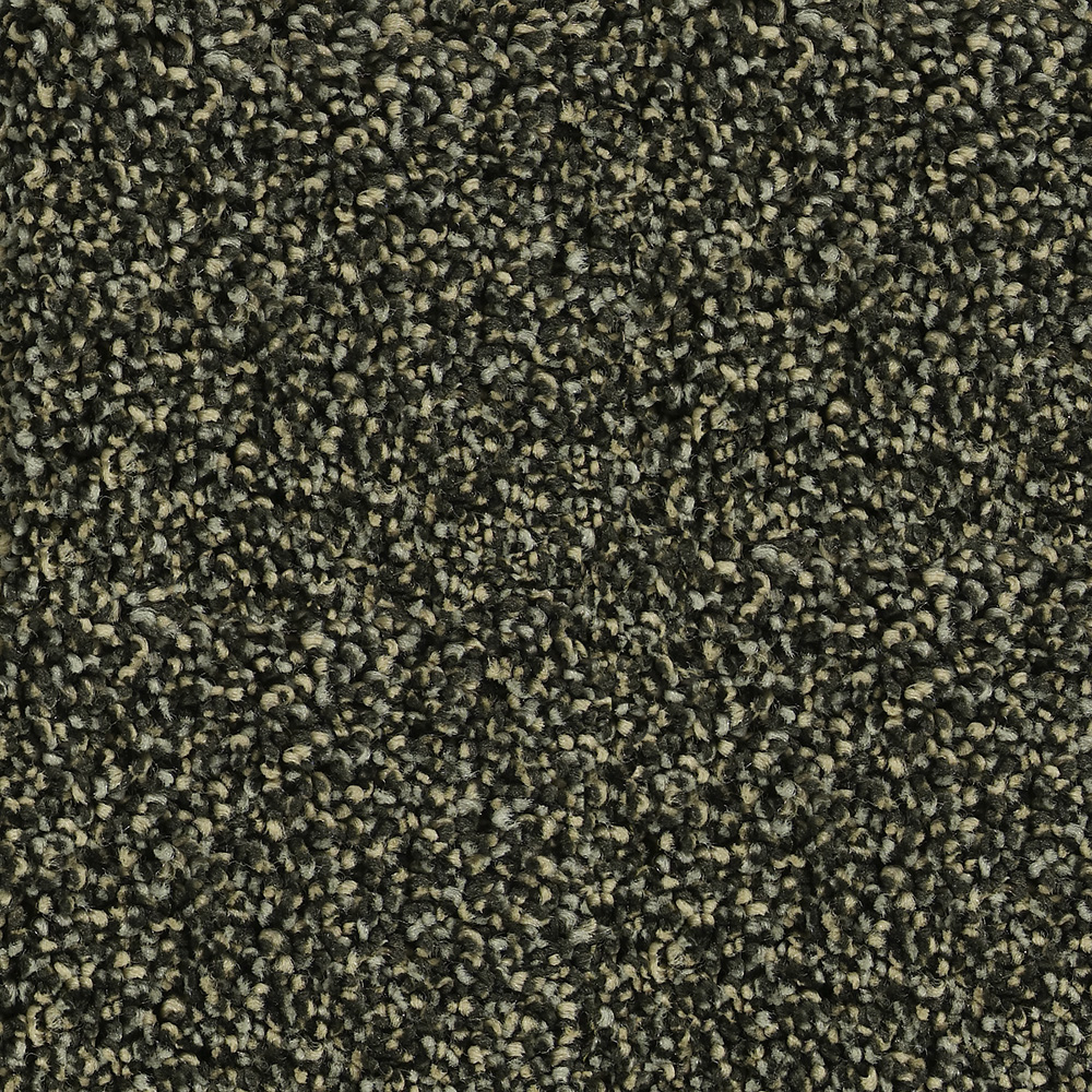 Beaulieu Carpet Dark Slate Green